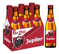 JUPILER pils 5,2%vol 6x25cl