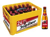 JUPILER pils 5,2%vol 24x25cl